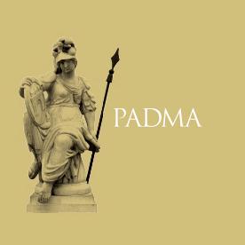 Das Logo der Domus Mentis Stiftung Pallas Athene